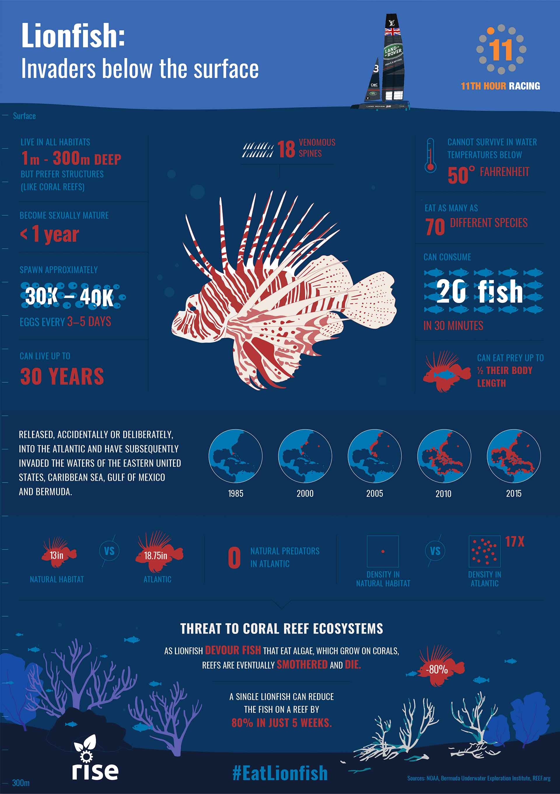 Infographic showing the lionfish problems (rise)